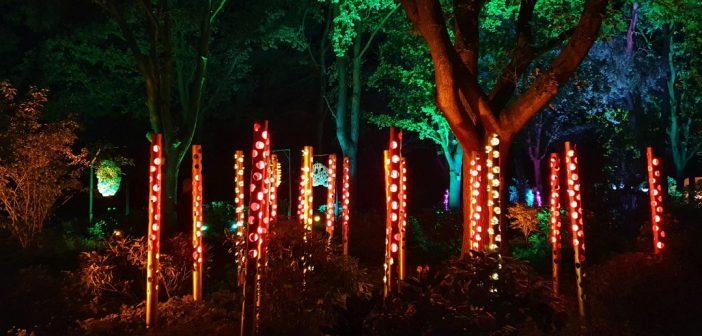 Park der Gärten wieder im Lichterrausch